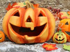 Herbstdeko Und Helloween Dekoration Online Bestellen Matches21