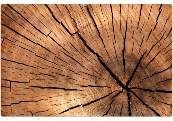 Tischset Platzset Holzoptik MOTIV Holz Holzscheibe Baumstamm 1 Stk. abwaschbar