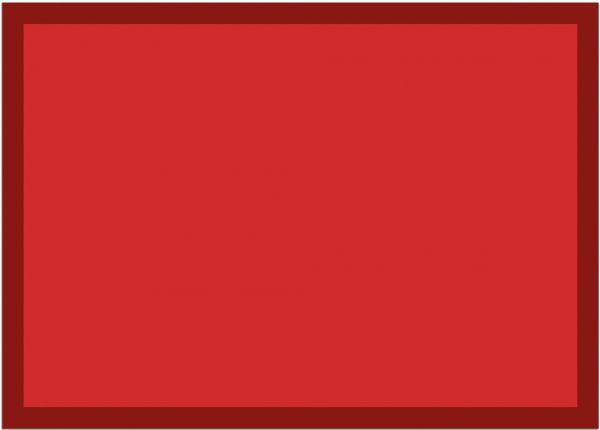 Fußmatte Fußabstreifer UNI einfarbig rutschfest waschbar 50x70 cm Farbe rot