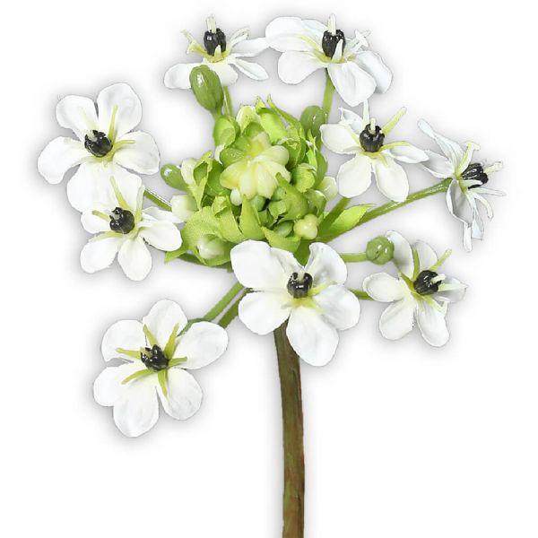 Milchstern Kunstblume Kunstpflanze Ornithogalum Arabicum 1 Stk 64 cm creme weiß