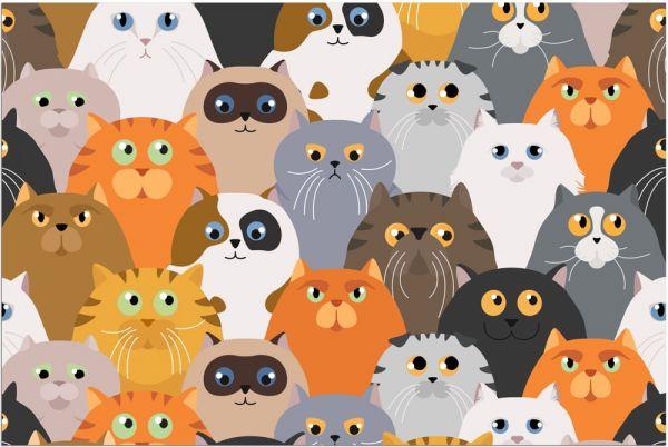 Fußmatte Fußabstreifer DECOR Katzen Katzenköpfe Comic Katze waschbar 40x60 cm