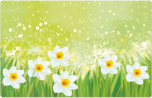 Tischset Platzset MOTIV Ostern Blumen Osterglocken grün bunt 1 Stk. Abwaschbar