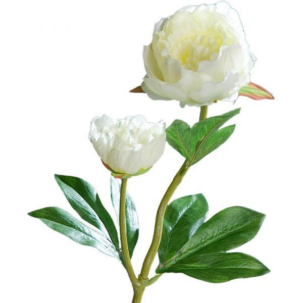 Pfingstrosen mit 2 Blüten Kunstblumen Päonien Kunstpflanze 1 Stk 60 cm - creme