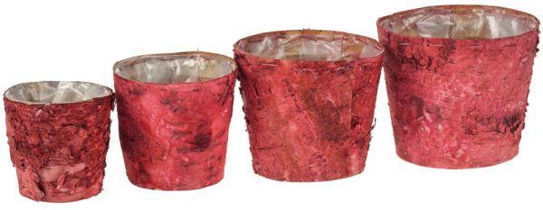 Holz Pflanztöpfe Birke / Holztöpfe mit Rinde 4er Set foliert in 2 Farben