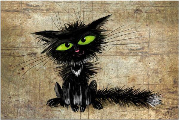 Fußmatte Fußabstreifer DECOR Katze nach Steckdose lustig frech waschbar 40x60 cm