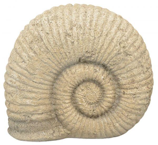 Fossil Ammonit Versteinert Schnecke Polyresin Vintage Deko 1 Stk - 20,8x10,8 cm