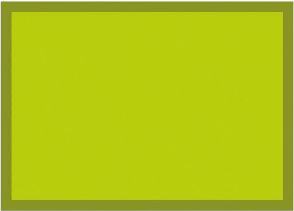 Fußmatte Fußabstreifer UNI einfarbig rutschfest waschbar 50x70 cm Farbe hellgrün