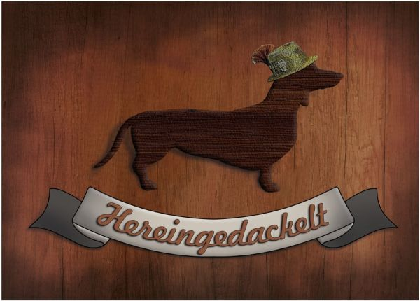 Fußmatte Fußabstreifer DECOR Hereingedackelt Dackel Hund Holz waschbar 50x70 cm